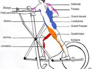 avantage vélo elliptique