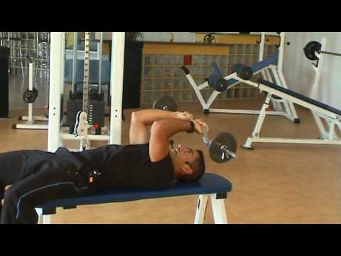 barre curl triceps
